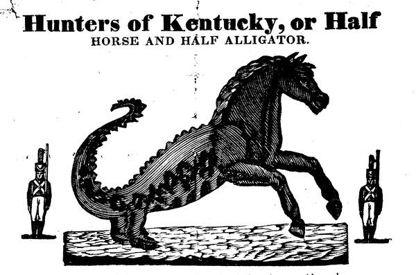 Half Horse Half Alligator 2